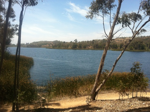The Miramar Reservoir is owned and operated by the City of San Diego